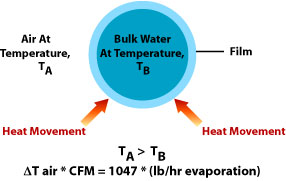 physics of evaporative cooling